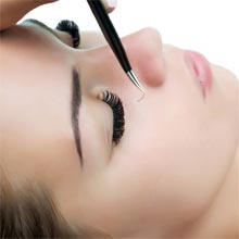 Eyelash / Brow Courses