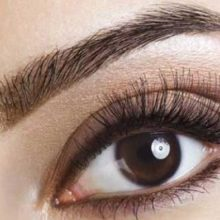 Eyebrow Extensions Course in Norwich