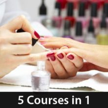 Professional Nail Technicians Course